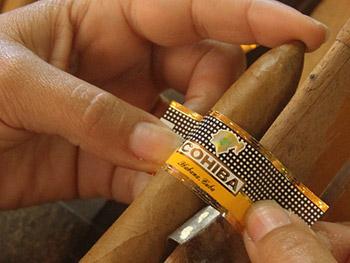 La Casa del Habano - lavorazione del sigaro